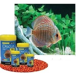 Aqua one discus bits specialist tropical food 85g aqua for Discus fish food