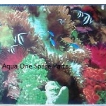 "Aqua One Aquarium  Paridise Fish  Background 19"" Tall x 4ft Wide"